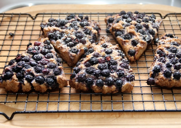 Blueberry Spelt Scones With Coconut