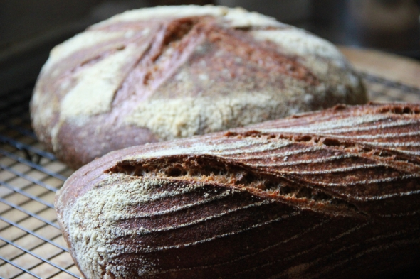 Sicilian Sifted Whole Wheat Sourdough