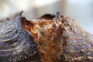 Forkish Overnight Brown crust closeup