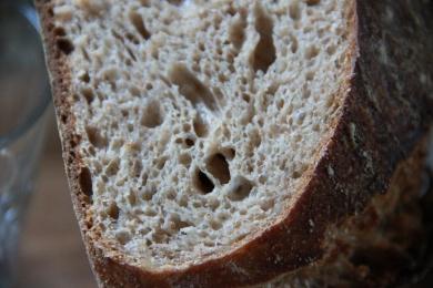 Forkish Overnight Brown crumb closeup